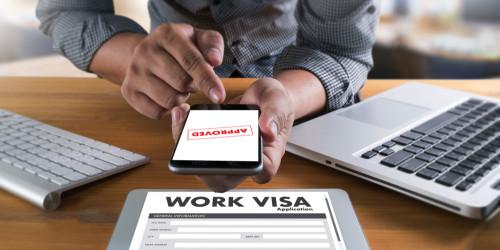 Niderland iş vizasını necə əldə etmək olar?